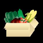 高齢者にやさしい野菜の宅配